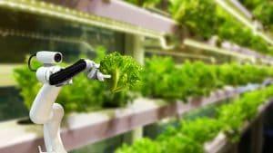ฟาร์มดิจิทัล (Digital Farming) ในสิงคโปร์