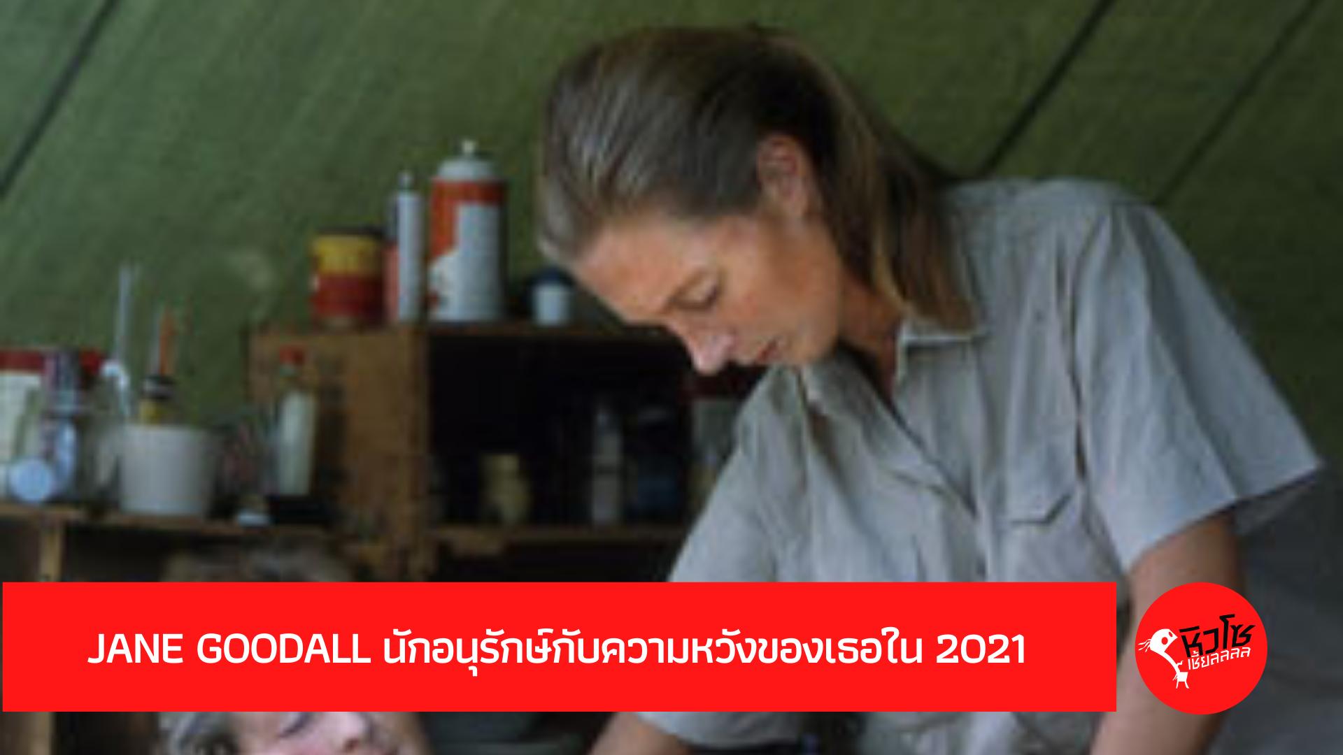Jane Goodall นักอนุรักษ์กับความหวังของเธอใน 2021